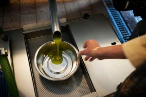 http://www.nytimes.com/2015/05/24/travel/italys-treasured-olive-oil-at-the-source.html